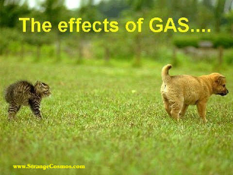 EFFECTS OF GAS :)