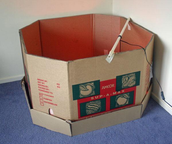 Pumpkin Box - brooder
