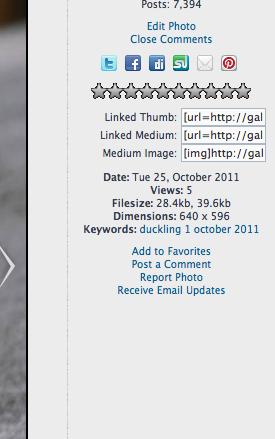 Screen_Shot_2012-12-08_at_3_39_42_PM