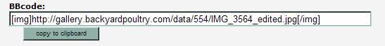 dataBYP