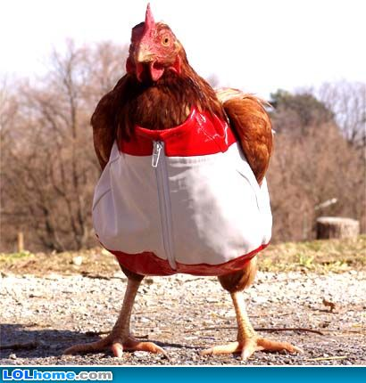 Underpants Chicken