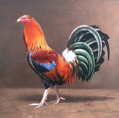 art of john moore , irish gamefowl artist