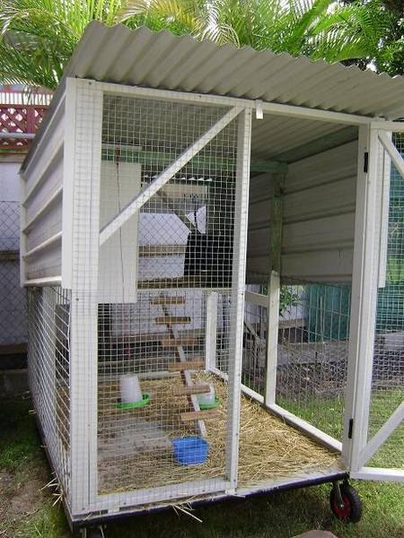 My Chicken Coop
