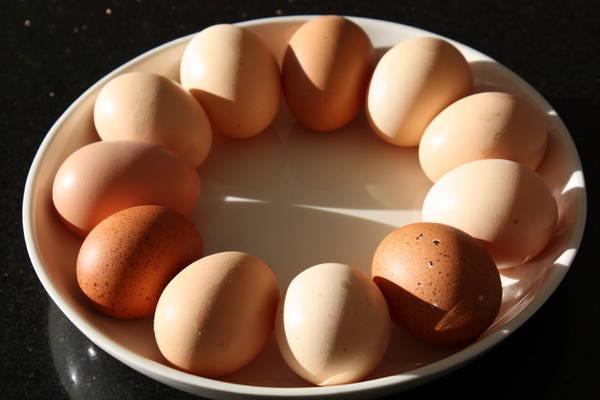 Egg ring 2