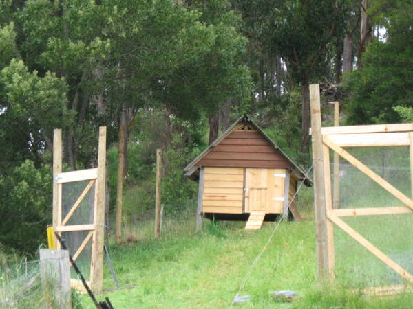 It was a cubby, now it's a chook palace