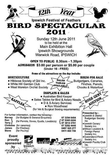 Ipswich_Bird_Spectacular_2011
