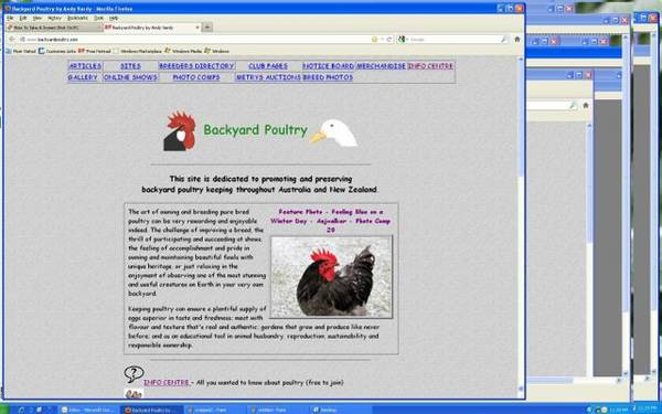 byp_screen2