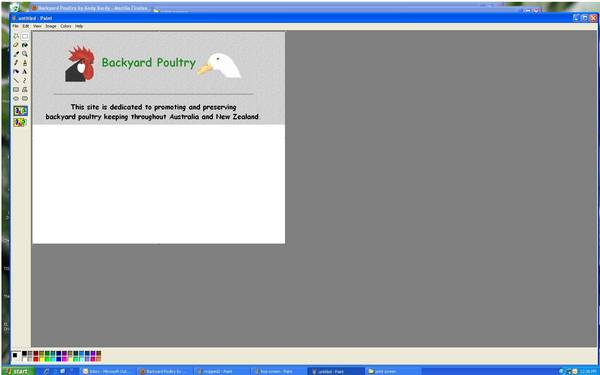 Using print screen