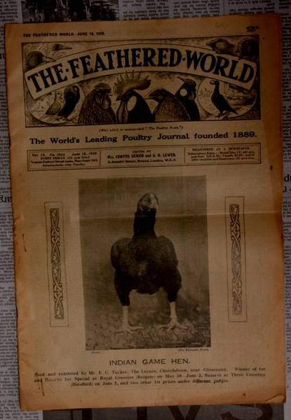 80 year old english poultry newspaper
