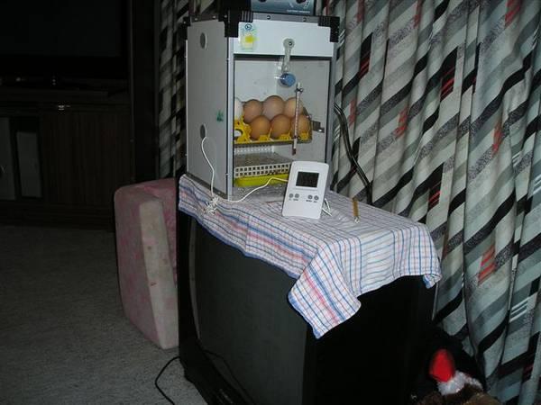 Set top Box (incubator)