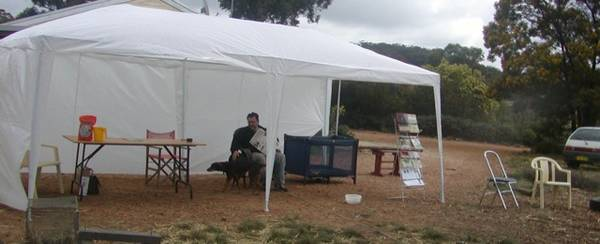 Marquee in Field Days space