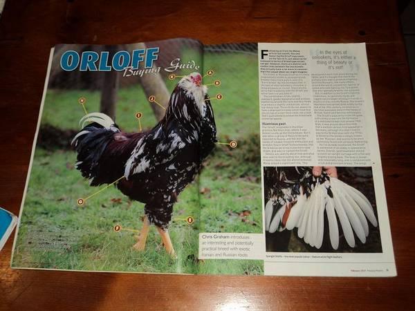 orloff2