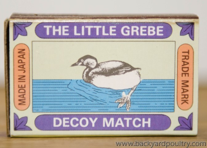matchbox_little_grebe_1_of_1_
